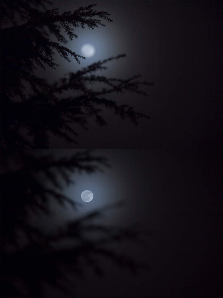 moon-diptych-web